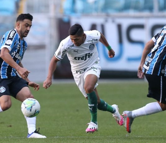 Palmeiras -3- Foto-Cesar Greco-Palmeiras
