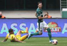 Palmeiras - Foto Palmeiras Cesar Greco