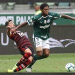 Palmeiras x Flamengo ao vivo - Foto-Divulgação - Palmeiras