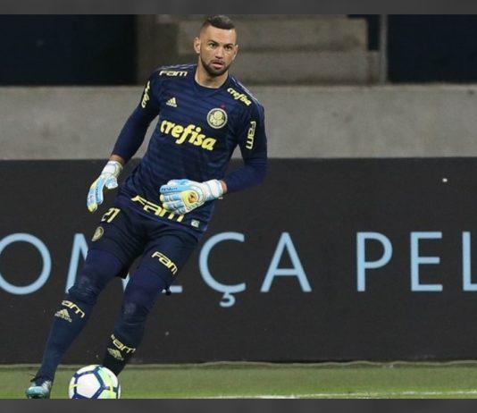 Palmeiras x Sport ao vivo - Foto-Divulgação - Palmeiras